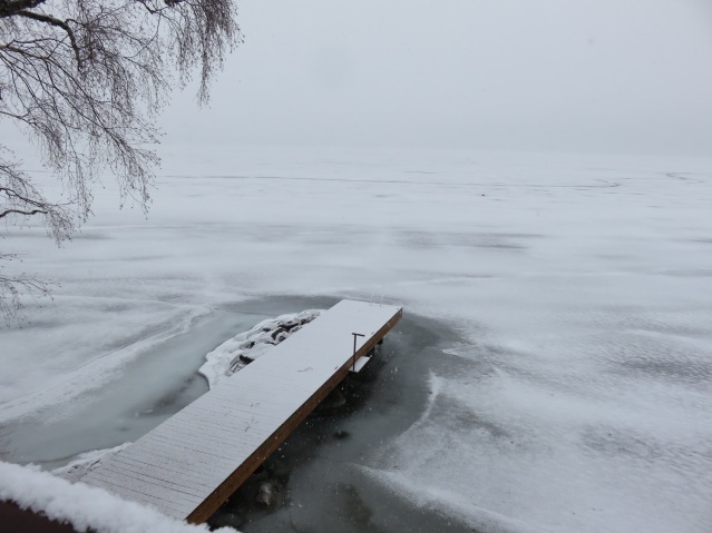 cottage-muskoka-dochia-ontario-4